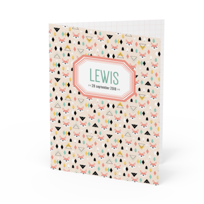 Geboortekaartje Lewis