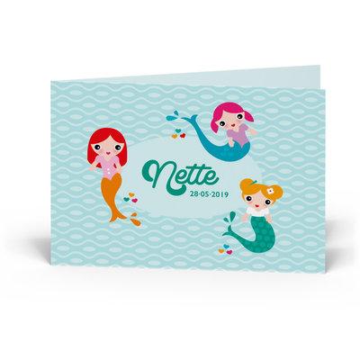 Geboortekaartje Nette