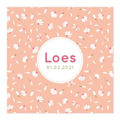 Geboortekaartje Loes