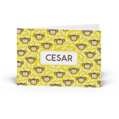 Geboortekaartje Cesar