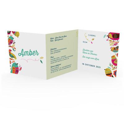 Geboortekaartje Amber