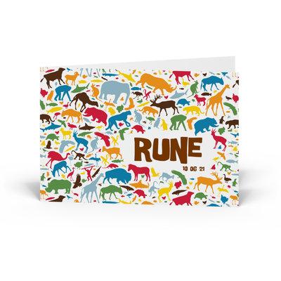 Geboortekaartje Rune