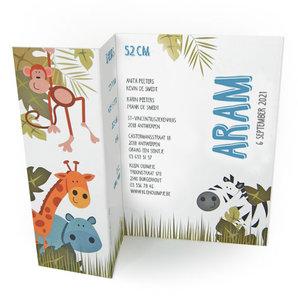 Geboortekaartje Aram