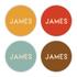 Geboortekaartje James_